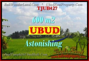Affordable 600 m2 LAND IN UBUD FOR SALE TJUB427