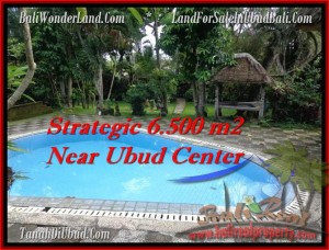 FOR SALE Magnificent LAND IN Ubud Tegalalang BALI TJUB479