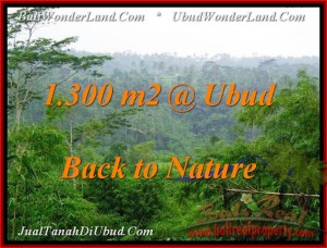 Beautiful LAND IN Ubud Tegalalang BALI FOR SALE TJUB481