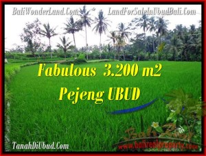 Exotic LAND FOR SALE IN Ubud Pejeng BALI TJUB484