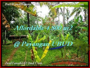 Beautiful 4,800 m2 LAND FOR SALE IN UBUD BALI TJUB486