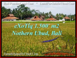 Beautiful PROPERTY LAND FOR SALE IN UBUD TJUB488