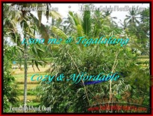 Affordable UBUD 1,500 m2 LAND FOR SALE TJUB489