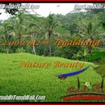 Beautiful PROPERTY LAND IN Ubud Tegalalang FOR SALE TJUB490