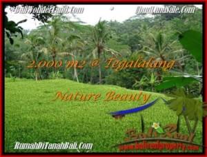 Exotic 2,000 m2 LAND SALE IN UBUD TJUB490