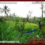 Magnificent Ubud Tegalalang 2,000 m2 LAND FOR SALE TJUB490