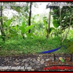 Exotic LAND FOR SALE IN UBUD BALI TJUB490