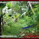 Magnificent PROPERTY 2,000 m2 LAND SALE IN Ubud Tegalalang BALI TJUB490