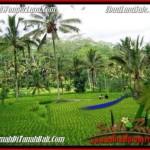 Exotic PROPERTY LAND SALE IN UBUD BALI TJUB490