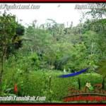 2,000 m2 LAND FOR SALE IN Ubud Tegalalang TJUB490