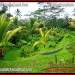 Affordable Ubud Tegalalang BALI LAND FOR SALE TJUB480
