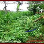 Exotic LAND SALE IN Ubud Tegalalang BALI TJUB481