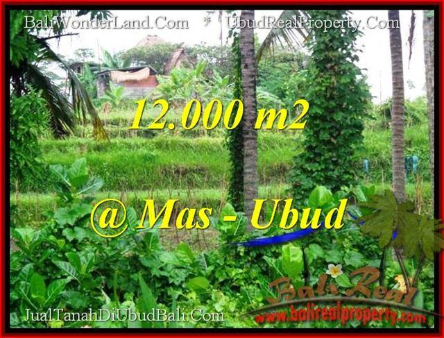 FOR SALE Magnificent 12,000 m2 LAND IN UBUD TJUB492