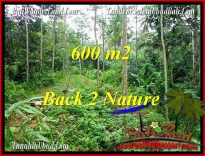Beautiful 600 m2 LAND FOR SALE IN UBUD BALI TJUB493