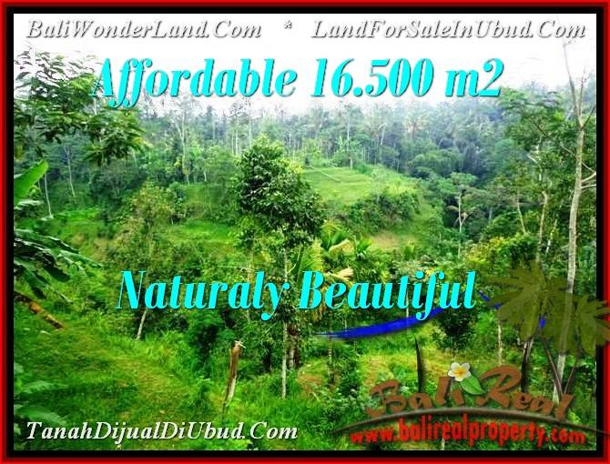 Affordable PROPERTY 16,500 m2 LAND IN UBUD BALI FOR SALE TJUB494
