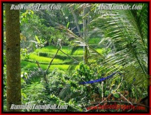Exotic PROPERTY UBUD BALI 725 m2 LAND FOR SALE TJUB495
