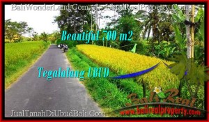 FOR SALE Beautiful PROPERTY 700 m2 LAND IN UBUD BALI TJUB497