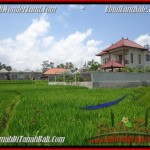 Magnificent Sentral Ubud BALI LAND FOR SALE TJUB445