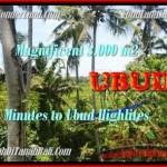 FOR SALE Affordable PROPERTY LAND IN Sentral Ubud BALI TJUB450