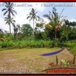 Affordable PROPERTY LAND FOR SALE IN Ubud Tegalalang BALI TJUB451