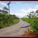 Beautiful PROPERTY LAND SALE IN Ubud Tegalalang BALI TJUB451