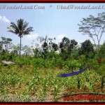FOR SALE 2.670 m2 LAND IN Ubud Tegalalang BALI TJUB451