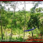 Exotic PROPERTY LAND IN Ubud Tegalalang BALI FOR SALE TJUB451