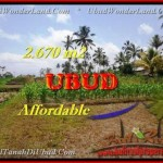 FOR SALE Beautiful LAND IN Ubud Tegalalang TJUB451