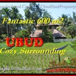 Magnificent LAND SALE IN Ubud Pejeng TJUB452