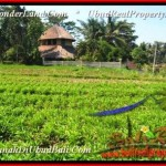 Affordable PROPERTY LAND FOR SALE IN Ubud Pejeng BALI TJUB452