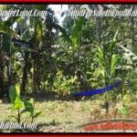 Magnificent LAND SALE IN Ubud Pejeng TJUB454