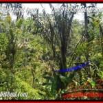 Affordable PROPERTY LAND FOR SALE IN Ubud Pejeng BALI TJUB454