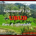 Exotic Ubud Pejeng LAND FOR SALE TJUB456