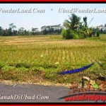 FOR SALE Beautiful LAND IN Ubud Pejeng TJUB456