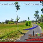 Magnificent LAND SALE IN Ubud Pejeng TJUB456