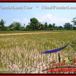 Magnificent PROPERTY Ubud Pejeng BALI LAND FOR SALE TJUB456