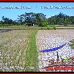 Exotic PROPERTY LAND IN Ubud Pejeng BALI FOR SALE TJUB456