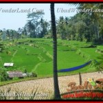 Affordable PROPERTY LAND FOR SALE IN Ubud Pejeng BALI TJUB456