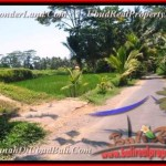 Affordable PROPERTY LAND SALE IN Ubud Tampak Siring BALI TJUB457