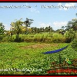FOR SALE Affordable LAND IN Ubud Tampak Siring TJUB457