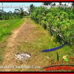 Beautiful Ubud Tampak Siring BALI LAND FOR SALE TJUB457