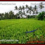 2,000 m2 LAND FOR SALE IN UBUD BALI TJUB485