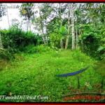 Affordable PROPERTY 4,800 m2 LAND FOR SALE IN Ubud Payangan TJUB486