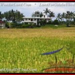 1,500 m2 LAND FOR SALE IN UBUD BALI TJUB488