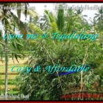 Exotic PROPERTY UBUD LAND FOR SALE TJUB489