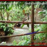 FOR SALE Beautiful PROPERTY LAND IN UBUD TJUB489