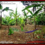 1,500 m2 LAND FOR SALE IN UBUD BALI TJUB489
