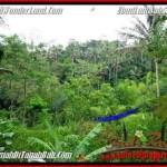 Magnificent 2,000 m2 LAND SALE IN UBUD BALI TJUB490