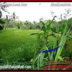 2,000 m2 LAND FOR SALE IN UBUD BALI TJUB490