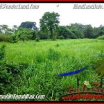 Magnificent 2,600 m2 LAND SALE IN UBUD BALI TJUB491